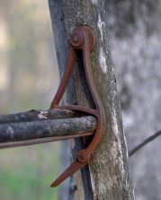 Tree stand ladder