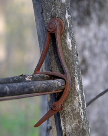 Tree stand ladder