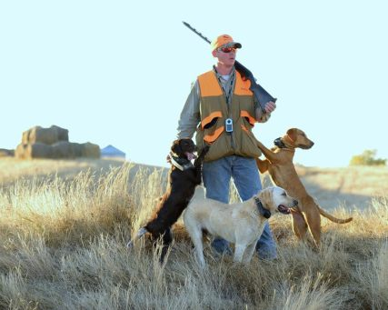 """Our guide """"Heater"""" with his dogs. It is clear who is the alpha!"""