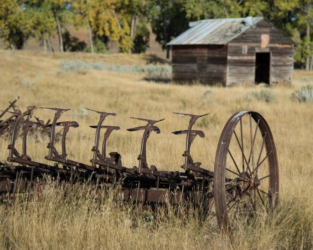 A plow abandoned many years ago.